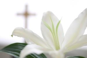 White Flower near Christian Cross